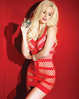 Mini Dress with Fish Net Panels